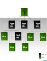 sơ đồ powerpoint thể hiện nguyên nhân và kết quản dạng bảng, cause-and-effect diagram