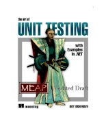 Unit test with Examples in.Net ppt