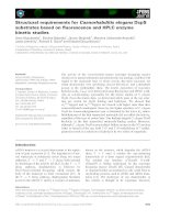 Báo cáo khoa học: Structural requirements for Caenorhabditis elegans DcpS substrates based on fluorescence and HPLC enzyme kinetic studies pdf