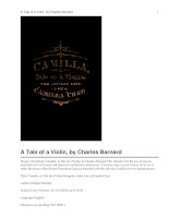 Camilla: A Tale of a Violin Being the Artist Life of Camilla Urso pdf