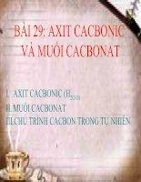 bài 29 axit cacbonic và muối cacbonat pptx