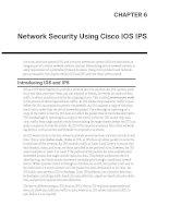 Network Security Using Cisco IOS IPS docx