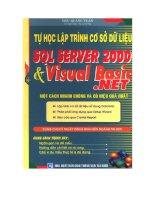 Tự học Lập trình cơ sở dữ liệu SQL 2000 và Visual basic .net một cách nhanh chóng và hiệu quả pdf