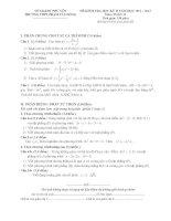 Đề thi kiểm tra học kì 2 năm 2013 môn toán 12 tỉnh Phú Yên pdf