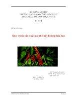 Tiểu luận:Quy trình sản xuất cà phê bột không hòa tan doc