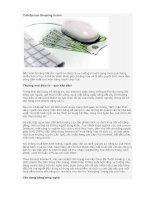 Thời đại của Shopping Online pdf