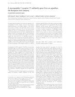 Báo cáo Y học: A neuropeptide Y receptor Y1-subfamily gene from an agnathan, the European river lamprey doc