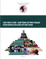Cấu trúc tuổi - giới tính và tình trạng hôn nhân của dân số Việt Nam pot