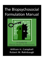 The Biopsychosocial Formulation Manual A Guide for Mental Health Professionals docx