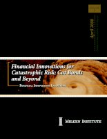 Financial Innovations for Catastrophic Risk: Cat Bonds and Beyond docx