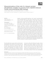 Báo cáo khoa học: Characterization of the role of a trimeric protein phosphatase complex in recovery from cisplatin-induced versus noncrosslinking DNA damage potx