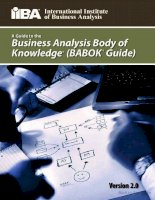 A guide to the business analysis body of knowledge pot
