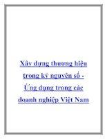 Xây dựng thương hiệu trong kỷ nguyên số Ứng dụng trong các doanh nghiệXây dựng thương hiệu trong kỷ nguyên số Ứng dụng trong các doanh nghiệp Việt Namp Việt pdf
