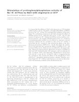 Báo cáo khoa học: Stimulation of p-nitrophenylphosphatase activity of Na+ ⁄ K+-ATPase by NaCl with oligomycin or ATP docx