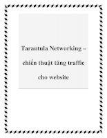 Tarantula Networking – chiến thuật tăng traffic cho website docx