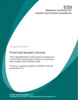 Familial breast cancer - The classification and care of women at risk of familial breast cancer in primary, secondary and tertiary care potx