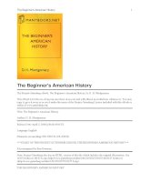 The Beginner''''s American History ppt