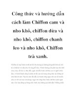Công thức và hướng dẫn cách làm Chiffon cam và nho khô, chiffon dừa và nho khô, chiffon chanh leo và nho khô, Chiffon trà xanh pot