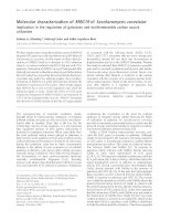 Báo cáo Y học: Molecular characterization of MRG19 of Saccharomyces cerevisiae Implication in the regulation of galactose and nonfermentable carbon source utilization pdf