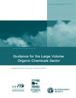 Organic Chemicals Sector Guidance for the Large Volume doc