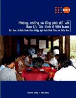 Phòng, chống và ứng phó đối với bạo lực gia đình ở Việt Nam ppt