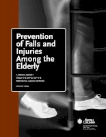 Prevention of Falls and Injuries Among the Elderly docx