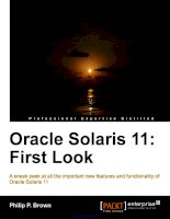 Oracle Solaris 11: First Look docx