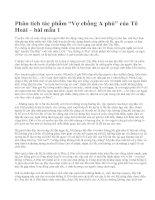 """Phân tích tác phẩm """"Vợ chồng A phủ"""" của Tô Hoài – bài mẫu 1"""