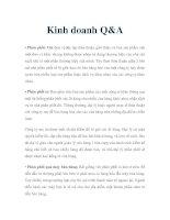 Kinh doanh Q&A pot