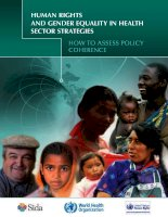 HUMAN RIGHTS AND GENDER EQUALITY IN HEALTH SECTOR STRATEGIES pdf