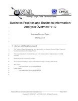 Business Process and Business Information: Analysis Overview v1.0 ppt