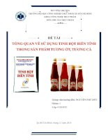 Tổng quan về sử dụng tinh bột biến tính trong sản phẩm tương ớt, tương cà