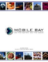 AN ECONOMIC OVERVIEW PUBLISHED BY THE MOBILE AREA CHAMBER OF COMMERCE doc