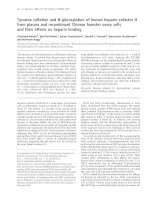 Báo cáo Y học: Tyrosine sulfation and N-glycosylation of human heparin cofactor II from plasma and recombinant Chinese hamster ovary cells and their effects on heparin binding pot