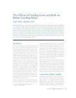 The Effects of Funding Costs and Risk on Banks' Lending Rates pot