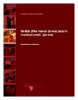 THE ROLE OF THE FINANCIAL SERVICES SECTOR IN EXPANDING ECONOMIC OPPORTUNITY potx