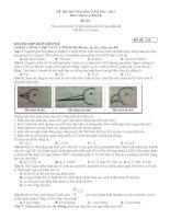 ĐỀ THI THỬ ĐAI HOC NĂM 2012 - 2013 ̣ ̣ Môn: Sinh hoc; Khôi B pdf