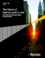 The future of internal audit is now Increasing relevance by turning risk into results pot