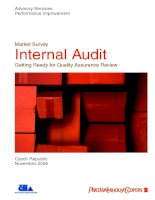 Market Survey Internal Audit Getting Ready for Quality Assurance Review pdf