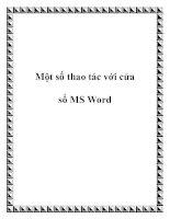 Một số thao tác với cửa sổ MS Word ppt