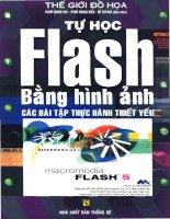 Tự học Flash bằng hình ảnh các bài tập thực hành thiết yếu pptx