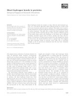 Short hydrogen bonds in proteins potx
