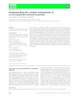 Báo cáo khoa học: Understanding the complex mechanisms of b2-microglobulin amyloid assembly potx