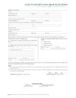 mẫu giấy ủy quyền giao dịch ngân hàng