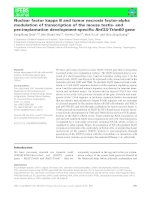Báo cáo khoa học: Nuclear factor kappa B and tumor necrosis factor-alpha modulation of transcription of the mouse testis- and pre-implantation development-specific Rnf33⁄Trim60 gene pot