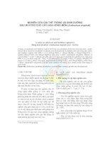 Nghiên cứu giá thể trồng và dinh dưỡng sau in vitro cho cây hoa Hồng Môn (Anthurium tropical) potx