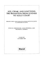 Age, crime, and sanctions: The transition from juvenile to adult court doc