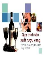 Đề tài: Quy trình sản trình sản xuất rượu vang ppt