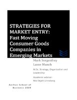 STRATEGIES FOR MARKET ENTRY: Fast Moving Consumer Goods Companies in Emerging Markets ppt