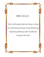 TIỂU LUẬN: Một số giải pháp nhằm mở rộng và nâng cao chất lượng tín dụng trung dài hạn tại Ngân hàng Thương mại Cổ phần Kỹ thương Việt Nam doc